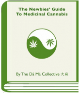 gallery/newbiesguide-bookicon-green